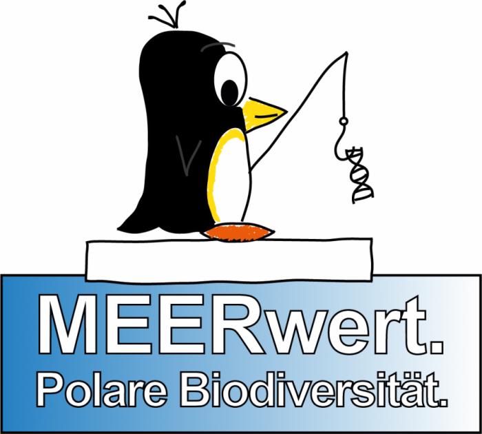 Pinguin auf Eisschollen-Meerwert Logo