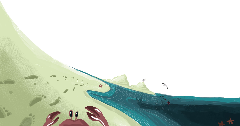 Hadar illustration Blog